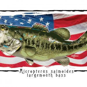 A Largemouth Bass on an American Flag background